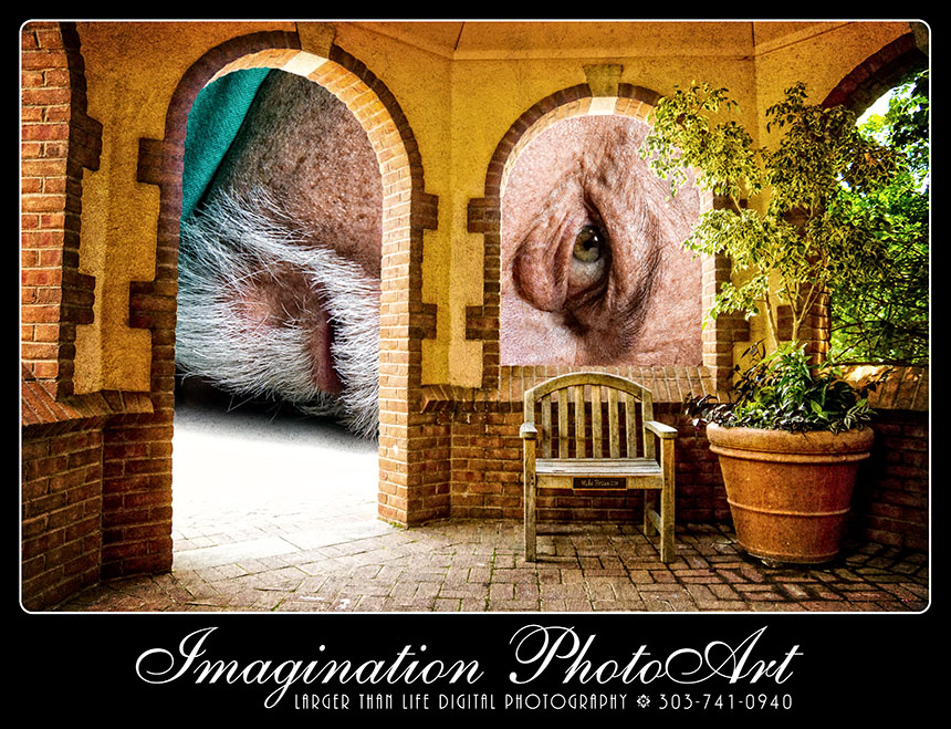 ImaginationPhotoArt